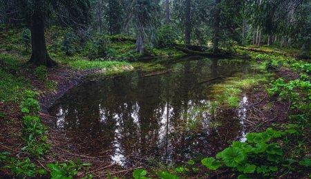 Учнівській молоді про водно-болотні угіддя