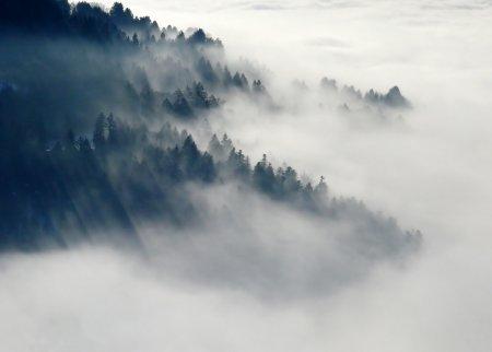 Туман долинами пливе