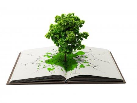 Відмовся від паперу – збережи ліс і воду для нащадків